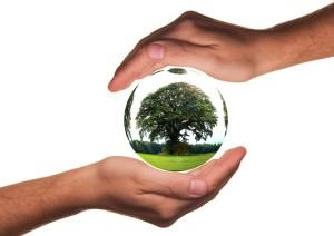 Ankauf von Autos mit Motorschaden schont die Umwelt in Kaufbeuren